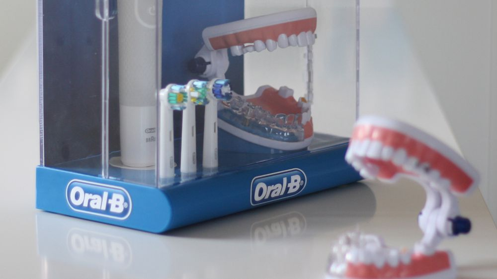 Oral B Typodonts